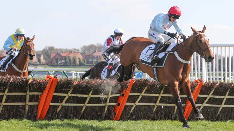 Verdana Blue storms clear to win the Scottish Champion Hurdle at Ayr
