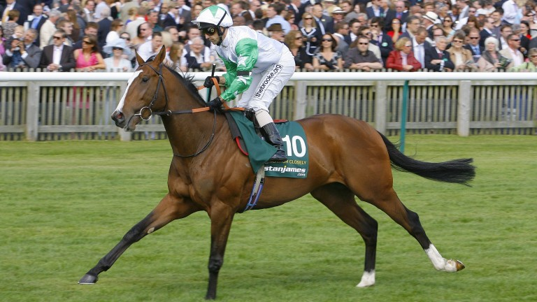Monitor Closely: early jumps runners conceived in France have shown promise