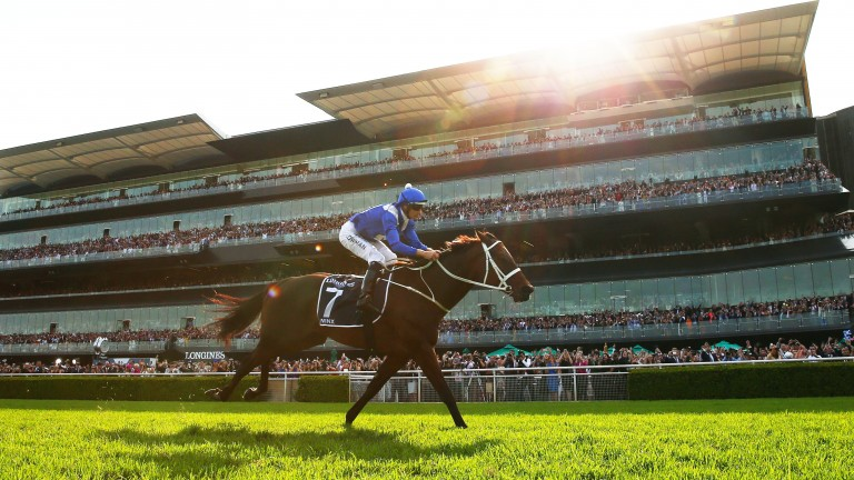 SYDNEY, AUSTRALIA - APRIL 13: Hugh Bowman riding Winx wins race 7 the Longines Queen Elizabeth Stakes during The Championships Day 2 at Royal Randwick Racecourse on April 13, 2019 in Sydney, Australia. (Photo by Matt King/Getty Images)