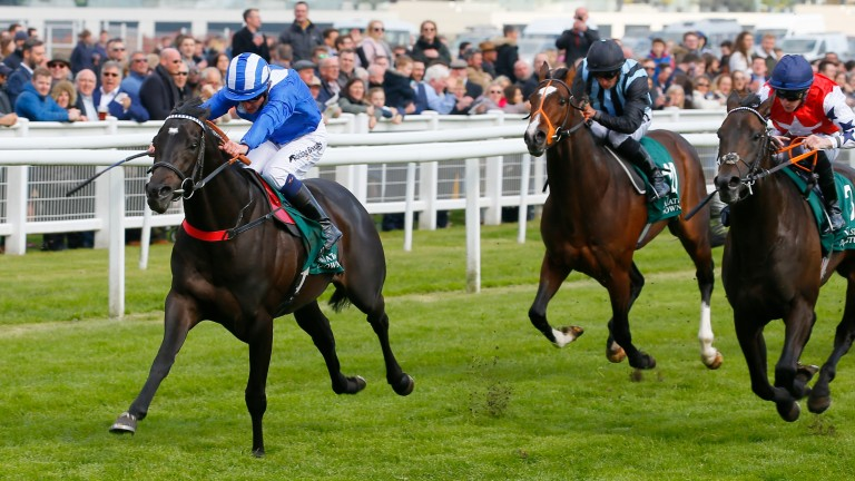 Mohaather (Jim Crowley) stretches clear to win the Greenham from Great Scot (right) and Urban Icon on Saturday