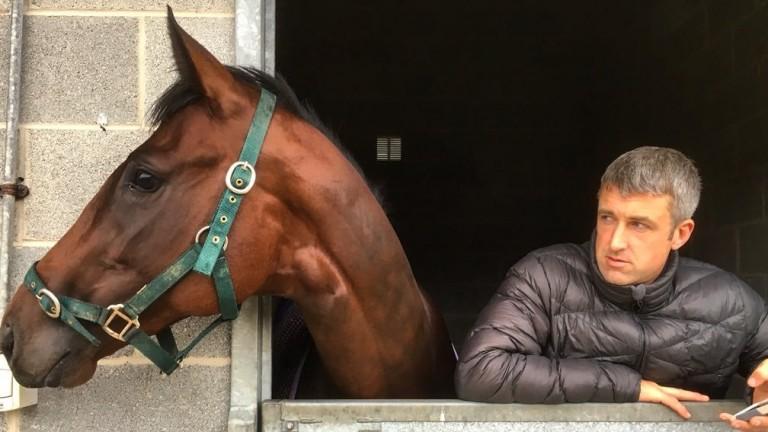 Cormac Farrell with Dundalk barrier trial 'winner' Young Dandy