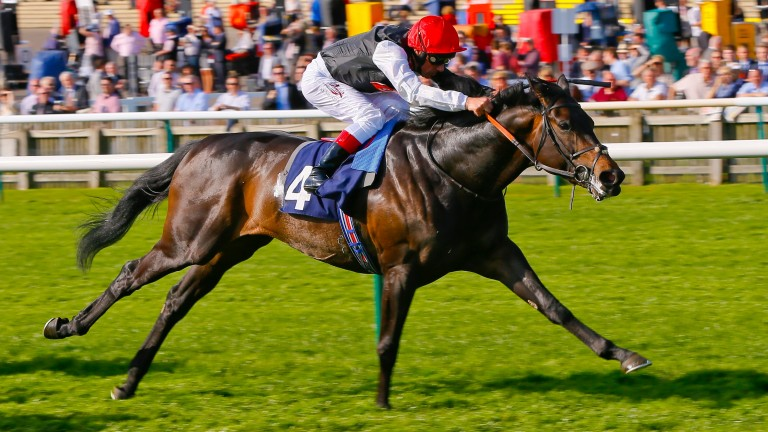 Golden Horn wins the Feilden Stakes in 2015. Does John Gosden have a similar star in waiting this time in Kick On?