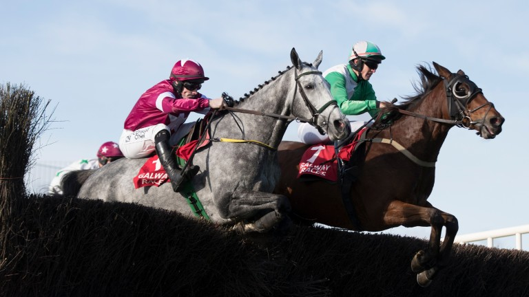 Tout Est Permis (left) is a leading Irish Grand National hope for Gigginstown