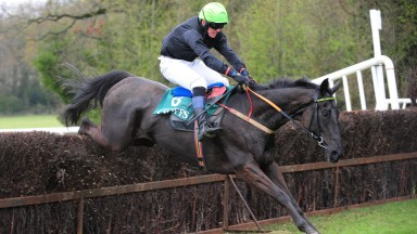 Stradbally PTP 14-4-19 LOOK ALIVE & james Kenny jump the last to win the 5YO Geldings Maiden Race.(Photo Healy Racing)