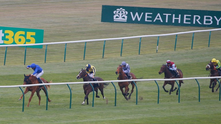 Chasing Dreams (left) leads her rivals a merry dance on debut at Newmarket