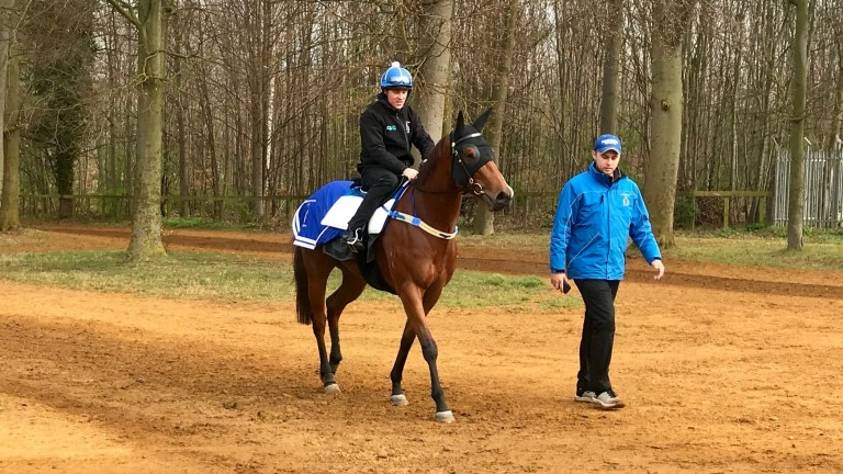 Houtzen and Trent Edmunds return from exercise