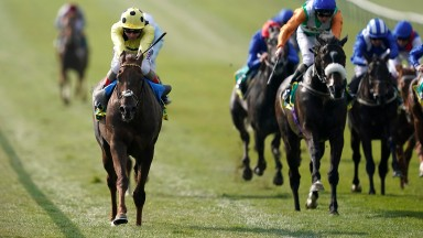 Andrea Atzeni riding Zabeel Prince (yellow) win The bet365 Earl Of Sefton Stakes at Newmarket (Photo by Alan Crowhurst/Getty Images)