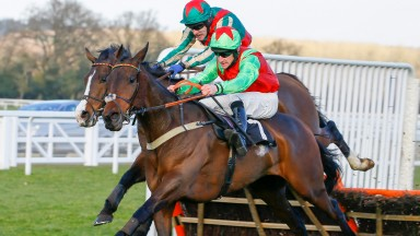 Le Patriote: Swinton Hurdle-bound after Cheltenham success