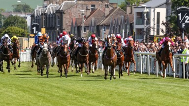 The action will be fast and furious in the Scottish Sprint Cup at Musselburgh