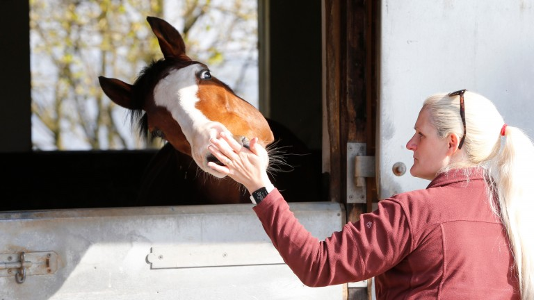 Visitor Kelly Hirst meets Auxiliary at Liam Bailey's yard in Middleham