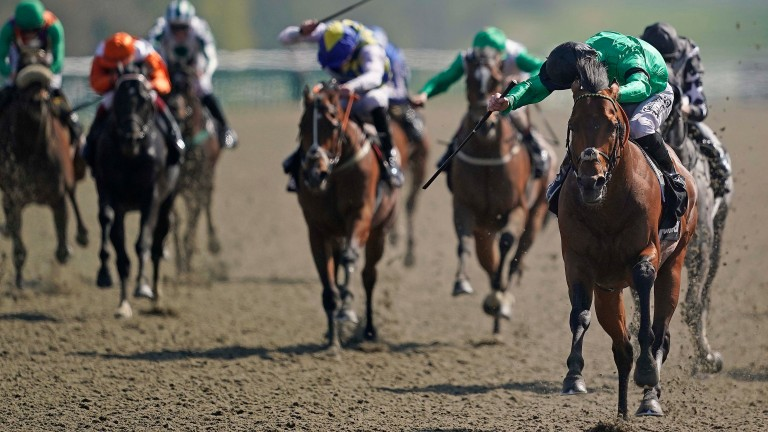 Richard Kingscote looks round for non-existent dangers as Kachy blitzes to victory on All-Weather Finals day at Lingfield