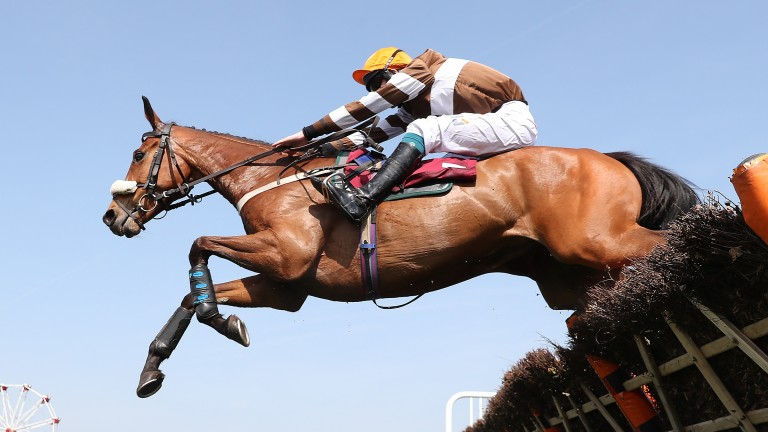Kentford Heiress: has done very well for Mullins in recent seasons