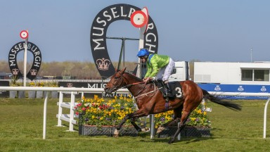 AUSTRIAN SCHOOL (Joe fanning) Musselburgh 20th April 2019Photograph by Grossick Racing Photography 0771 046 1723
