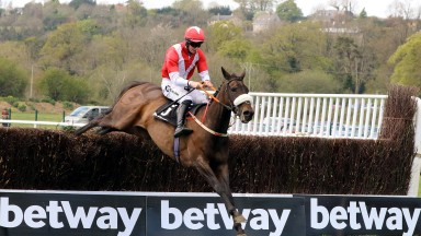Timeforwest jumps the last en route to capturing the Grade 3 Betway Chase at Cork
