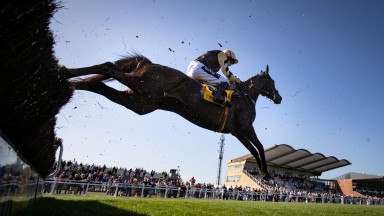 Voix Du Reve: won the Ryanair Gold Cup at Fairyhouse for Willie Mullins