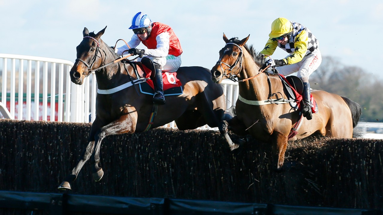 Talkischeap gamble could prove expensive for bookmakers in