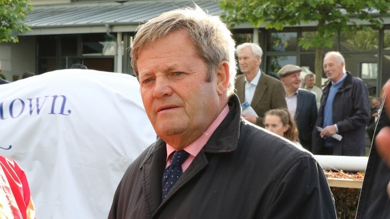 Joe Murphy: wouldn't be surprised to see Listed winner Insignia Of Rank jump a hurdle in time