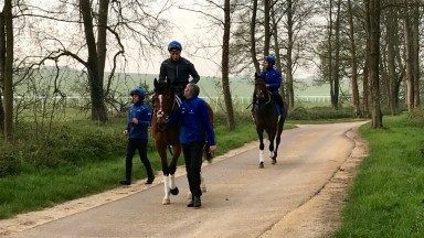 Barney Roy and William Buick at Moulton Paddocks on Wednesday