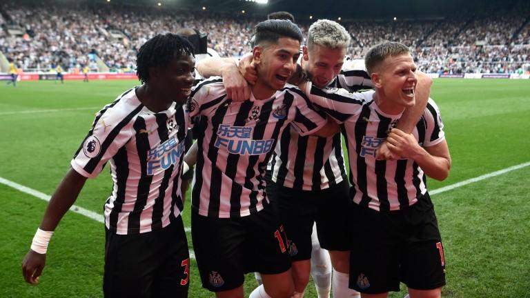 Newcastle celebrate Ayoze Perez's hat-trick goal in the win over Southampton