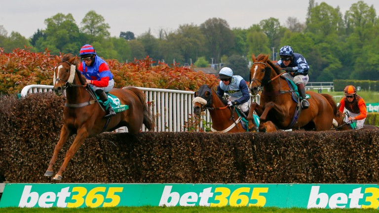 Step Back on his way to victory in last season's bet365 Gold Cup