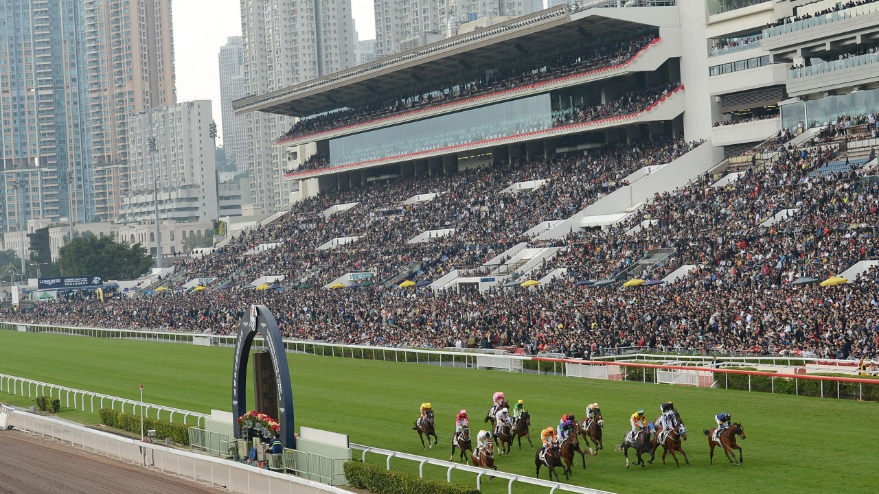 Hong kong horse racing betting losbancatore del betting lines