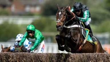 Up up and away: Altior and Nico de Boinville clear the last in the bet365 Celebration Chase at Sandown on Saturday