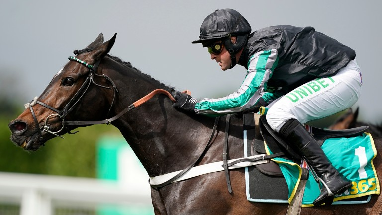 Altior: 11th hour Tingle Creek absentee