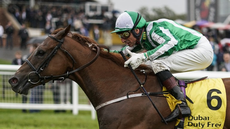 Mr Lupton: won the Greenlands Stakes last time