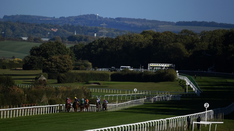 Scenic Salisbury: hosts a valuable card this afternoon
