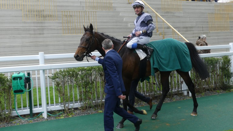 Study Of Man returning with Stephane Pasquier after finishing second in the Prix Ganay