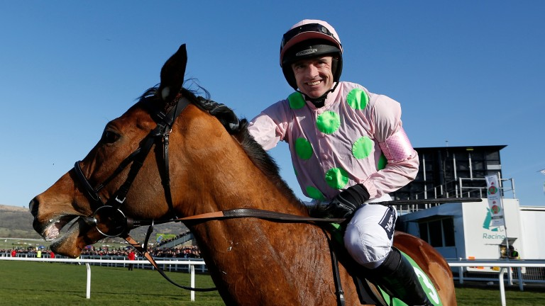 Faugheen: expected to make his chase debut on Saturday