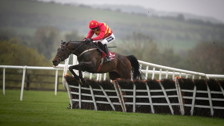 Klassical Dream and Ruby Walsh jumping the last to win the Herald Champion Novice Hurdle (Grade 1) .Punchestown Festival.Photo: Patrick McCann/Racing Post 30.04.2019