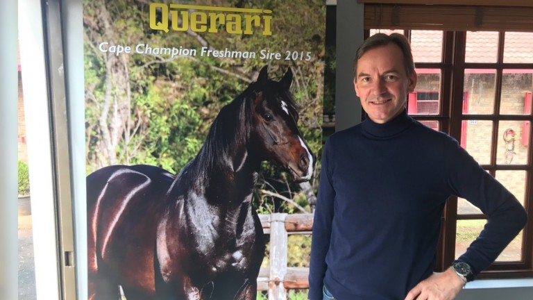 Andreas Jacobs believes his Oasis Dream stallion Querari offers toughness and speed