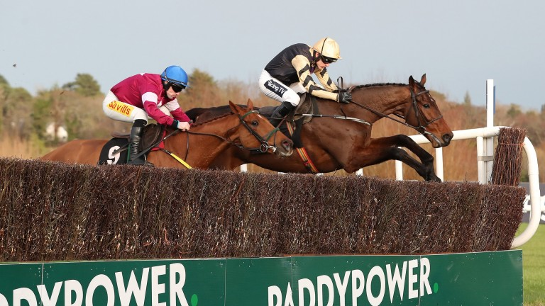 Bellshill (right) and Road To Respect fight out a thrilling Irish Gold Cup last year
