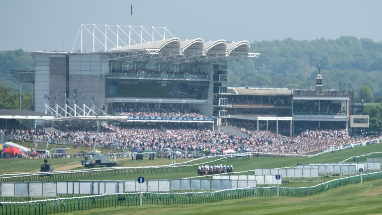 Rowley Mile: has also been used as a vaccination site in Newmarket