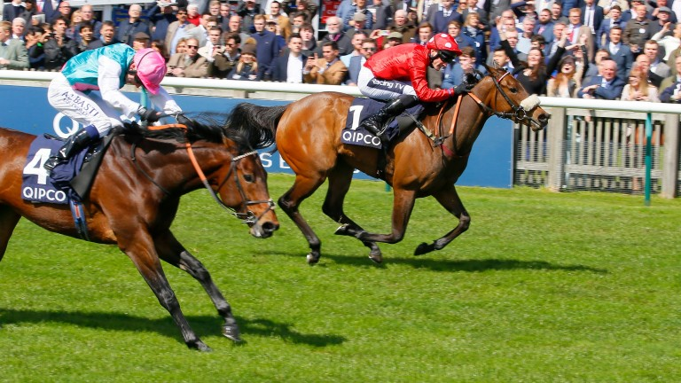 Mabs Cross winning the Palace House Stakes at Newmarket