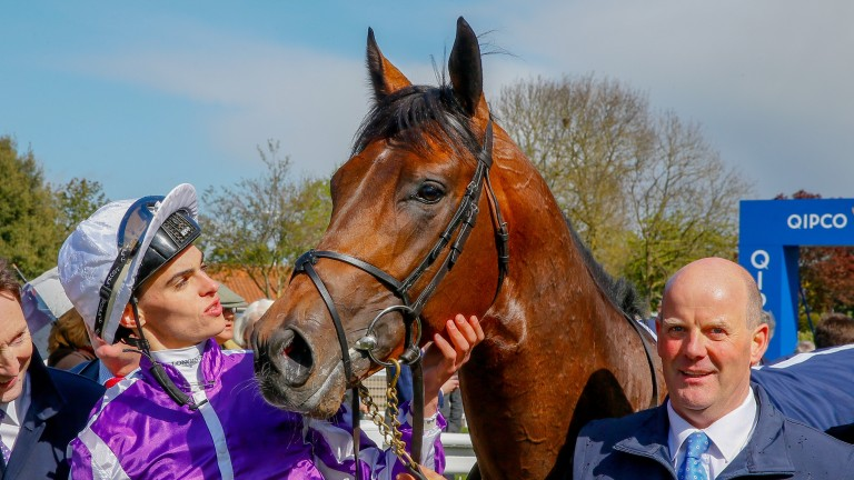 Donnacha O'Brien with Magna Grecia after the pair landed the Qipco 2,000 Guineas at Newmarket earlier this year