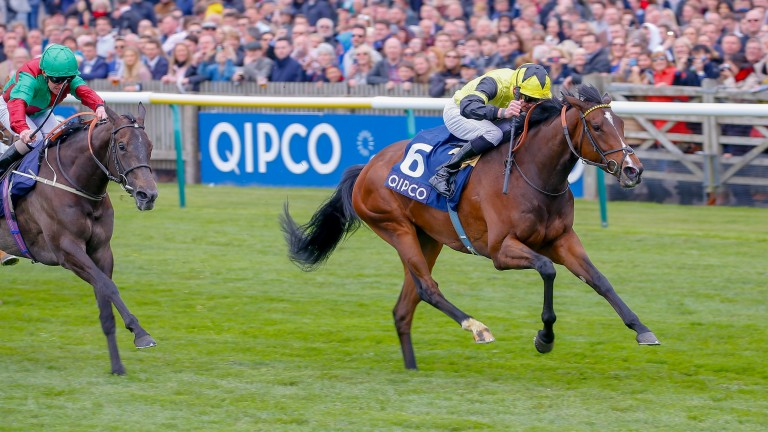 Worth Waiting: Newmarket winner is stepping back into Group 1 company