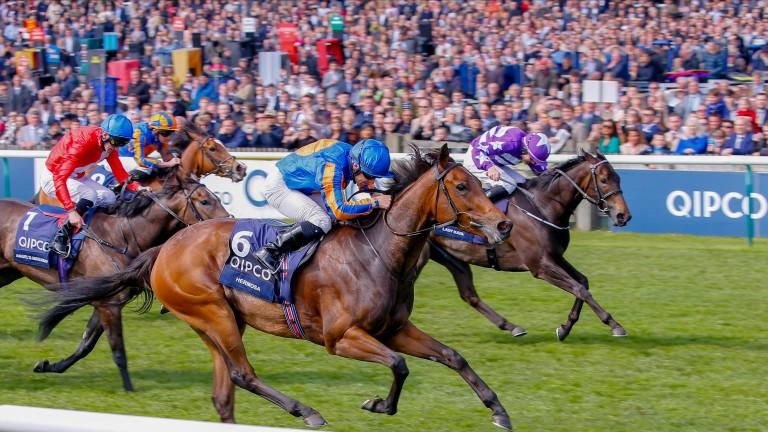 Hermosa heads the Qatar Nassau Stakes betting