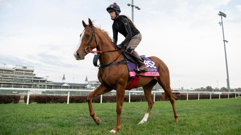 East: will line up in the Emirates Poule d'Essai des Pouliches at Longchamp