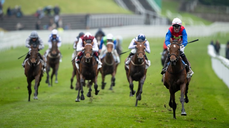 Mehdaayih: winner of the Cheshire Oaks last week and an Epsom market mover