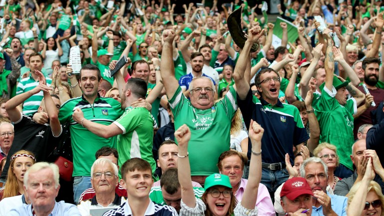 Limerick fans are hoping for back-to-back titles