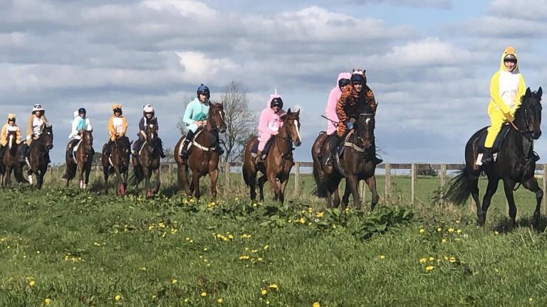 Onesie by onesie: on the gallops at Rebecca Menzies
