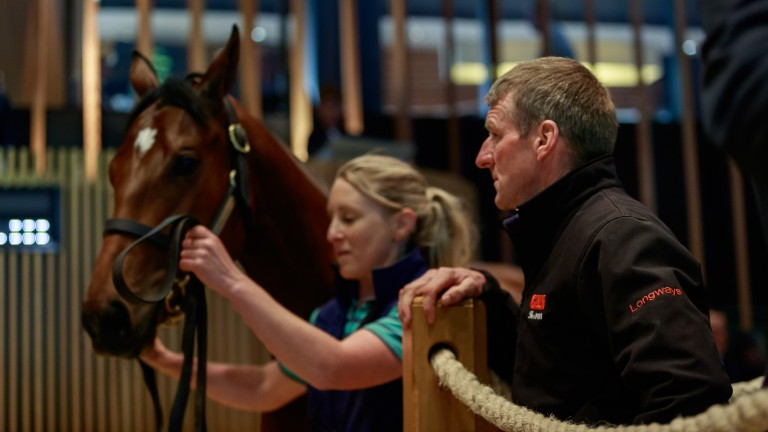 Mick Murphy of Longways looks on as his Kingman filly goes through the ring, eventually making ?650,000