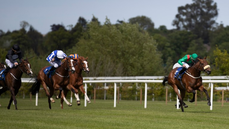 Hamariyna (right) on the way to Group 3 success at Leopardstown last month