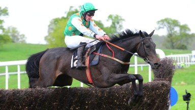 Necarne PTP 10-5-19 LADY TREMAINE & Rob James jump the last to win the 4YO Mares Maiden Race (Photo Healy Racing)