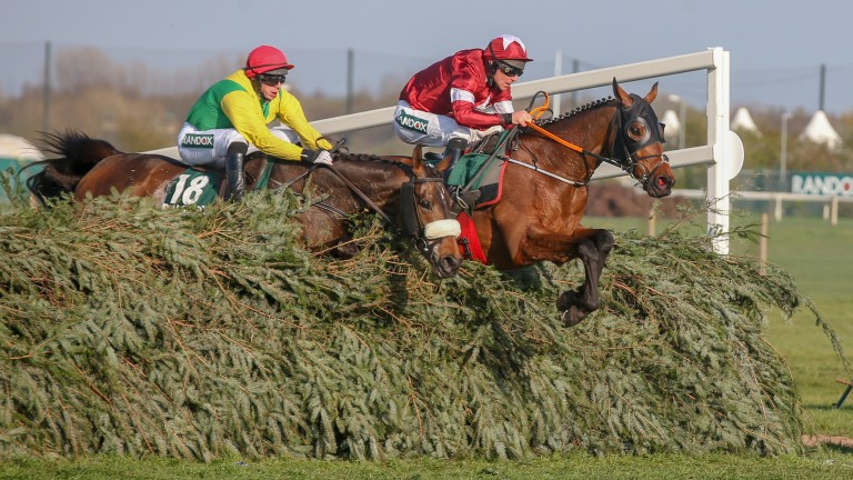 Tiger Roll and Davy Russell lead eventual runner-up Magic Of Light over the final fence in the National