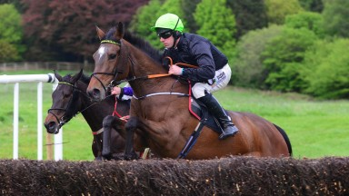 Necarne PTP 10-5-19 FRILLY ROCK & Barry O'Neill jump the last to win the 5YO Mares Maiden Race(Photo Healy Racing)