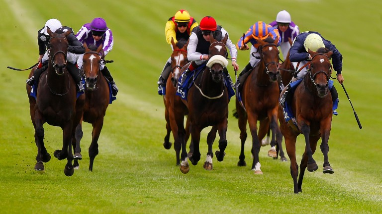 Shirocco Star (left) chases Great Heavens (right) home in the 2012 Irish Oaks