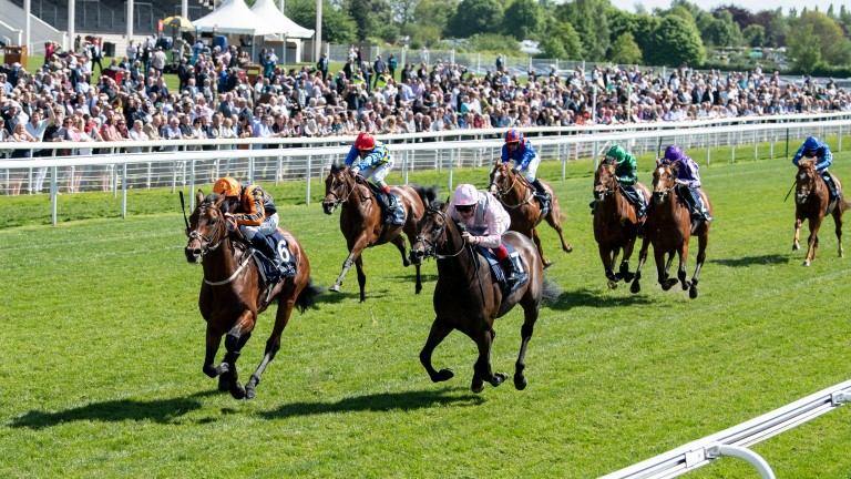 The Derby picture changes again as Telecaster beats Too Darn Hot in Thursday's Dante Stakes at York